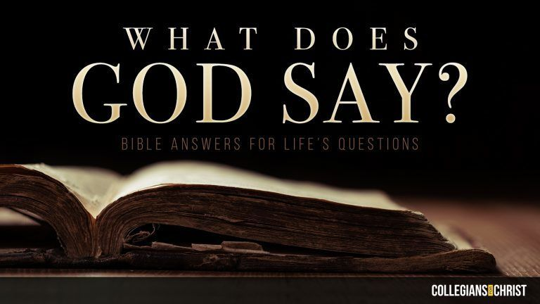 Daily Personal Bible Study - How to Seek God WHOLEHEARTEDLY?(READ THE DETAILS)