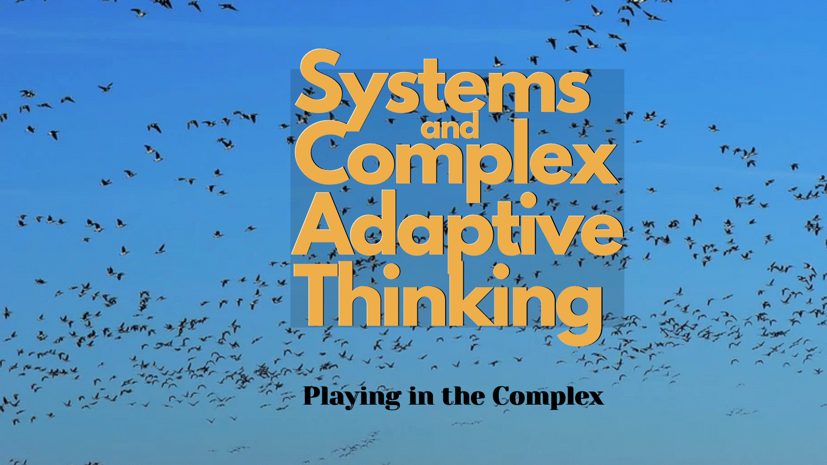 Systems and Complex Adaptive Thinking
