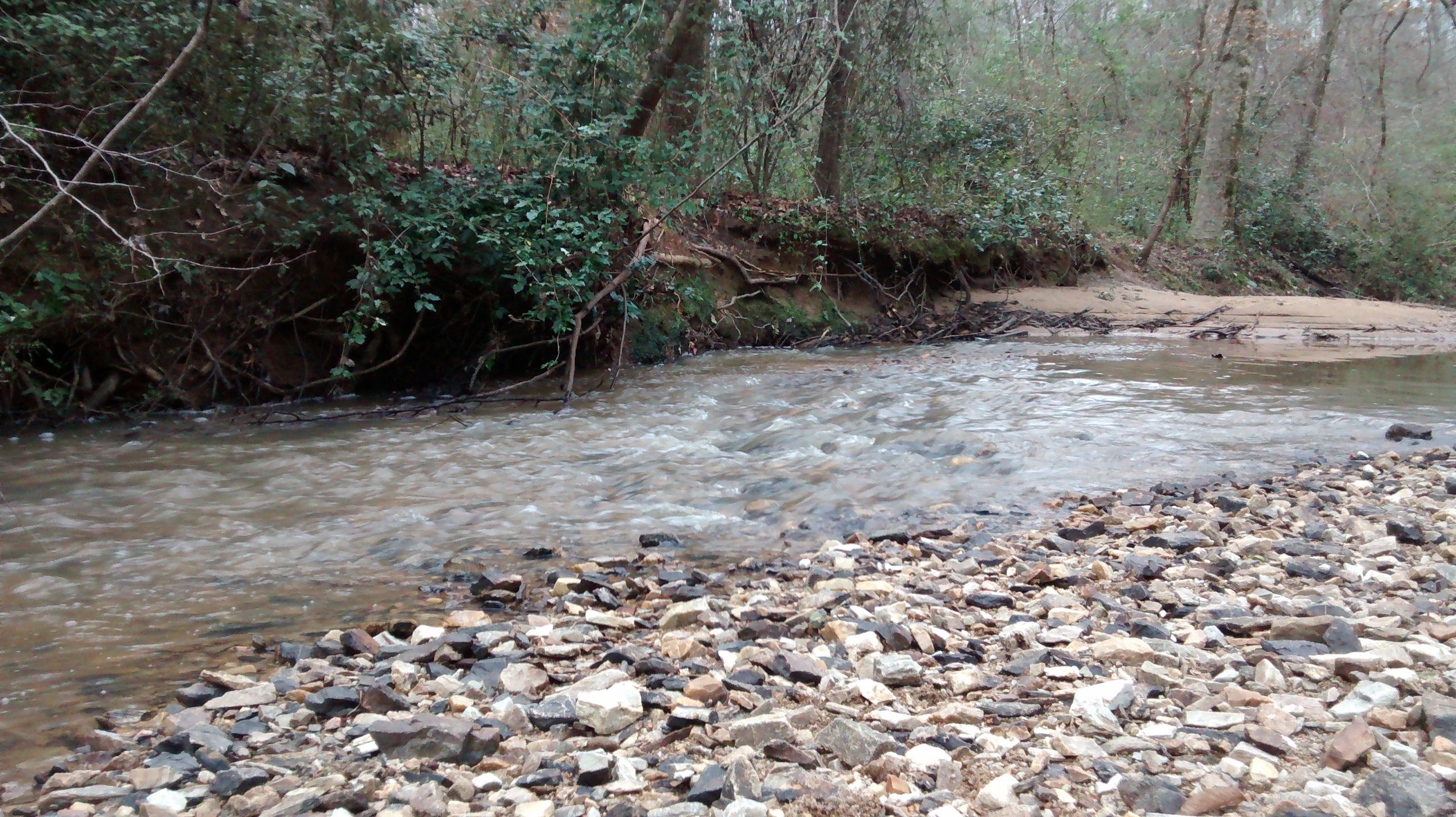 Ocmulgee Alive River Cleanup 6 Oct 2018