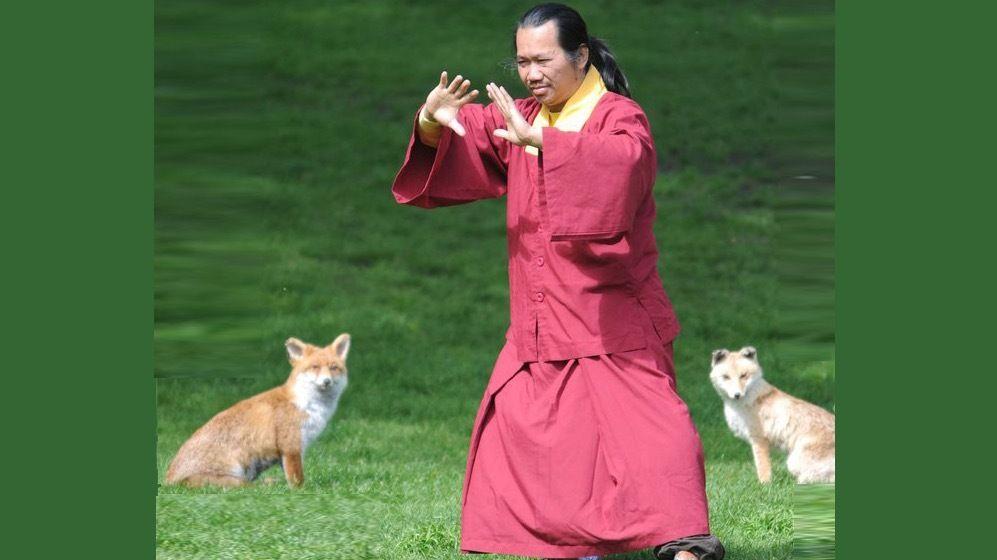 Free Tai Chi in London - Online via Zoom!