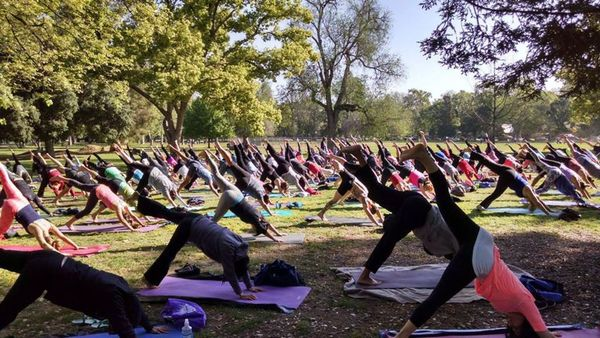 Yoga In The Park By Yoga Moves Us Sacramento Ca Meetup