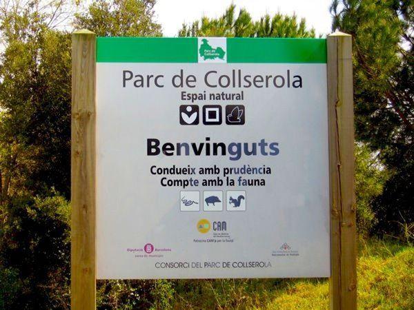Collserola (Barcelona, España) | Meetup