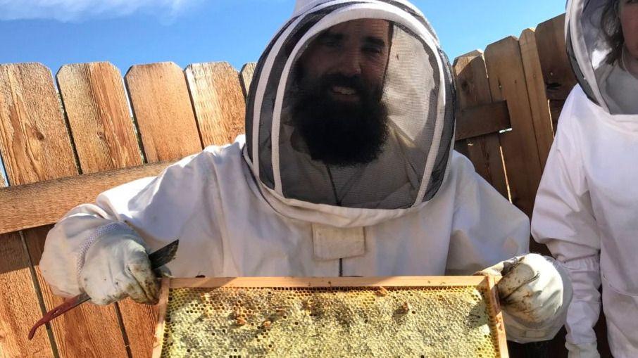 CSU JeffCo Sustainable Honeybee & Native Pollinators Club