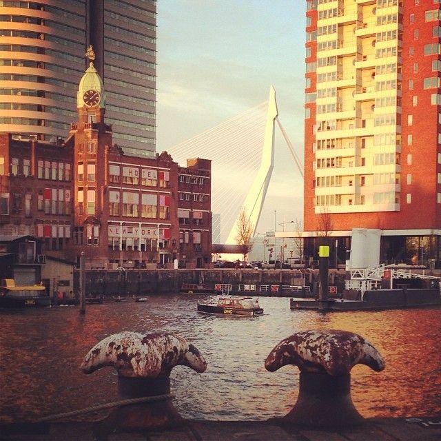 Fotocafe Rotterdam