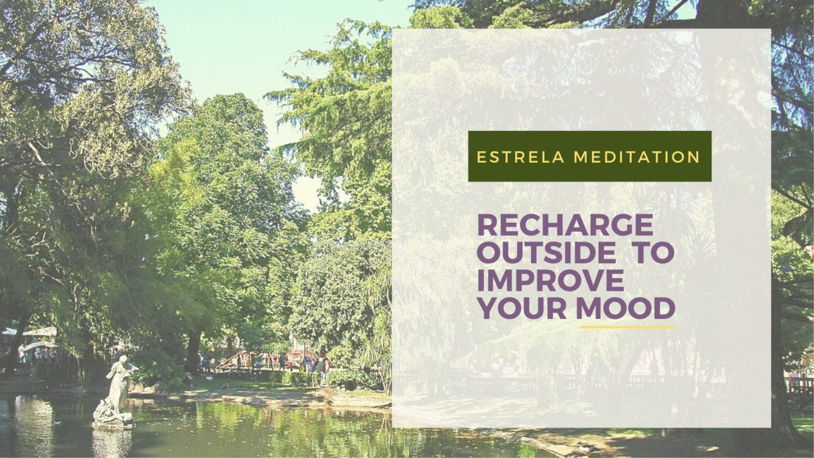 Guided Meditation in Estrela Park