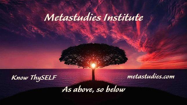 MetaStudies Institute