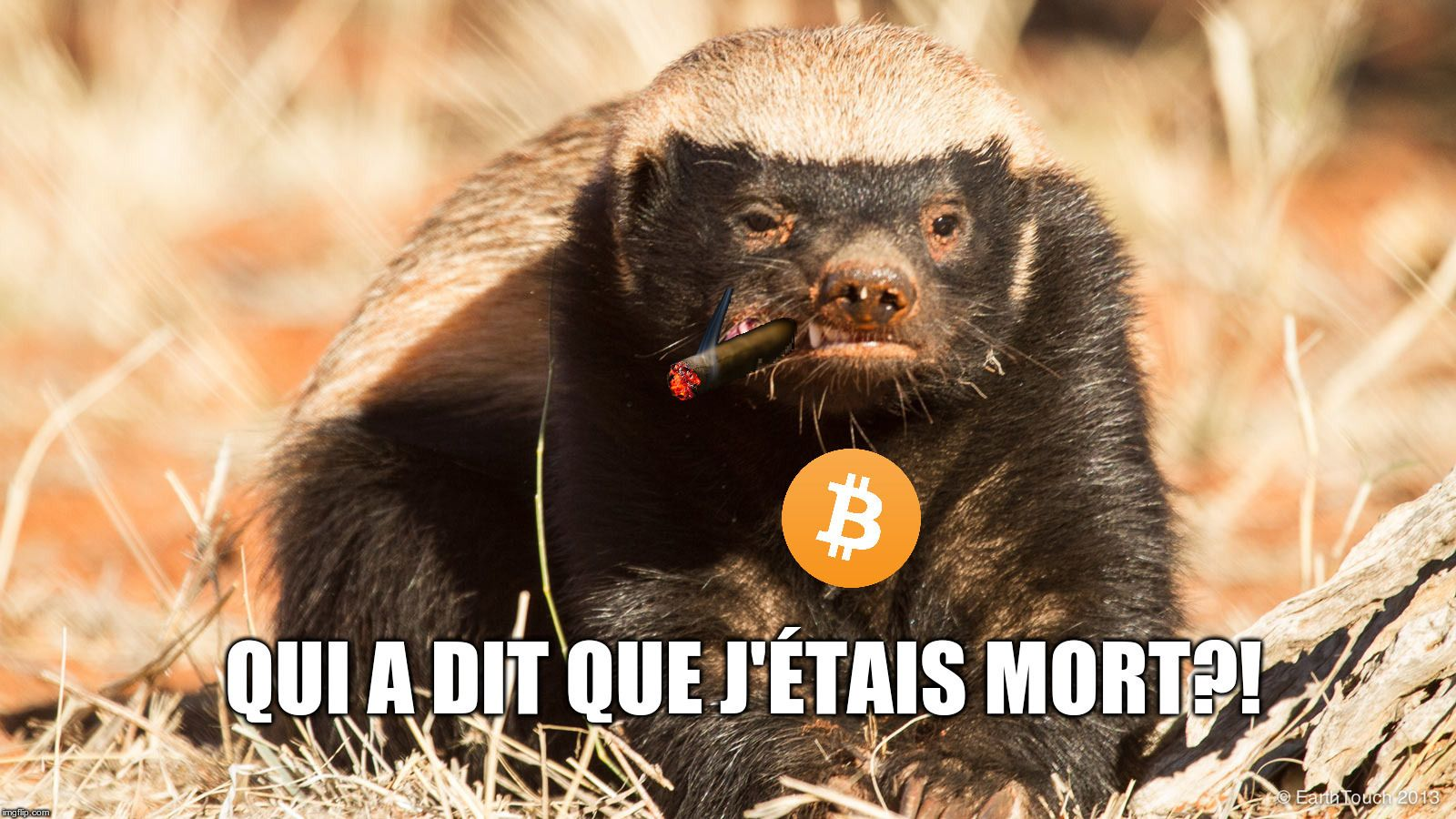 Bitcoin pair-à-pair