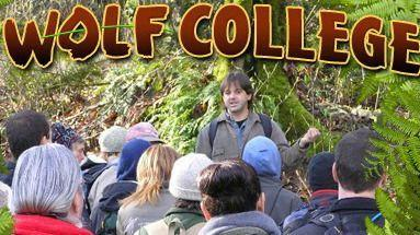 Outdoor Education in Tacoma, Olympia and the South Sound