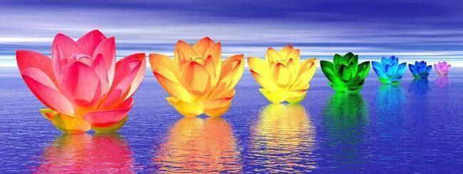 Perth Chakra Healing