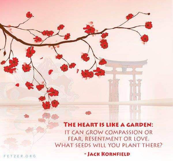 Burlington New Qigong, Meditation, Zen, Energywork & Healing