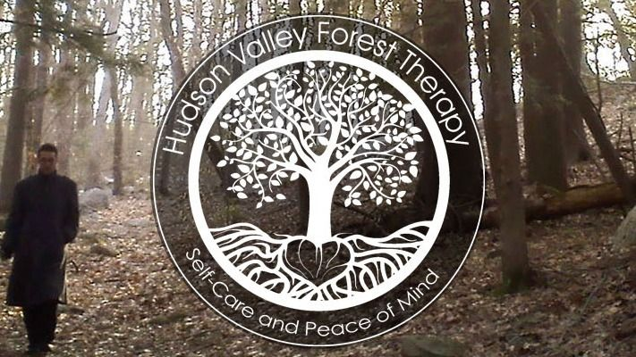 Hudson Valley Forest Therapy / Forest Bathing / Hiking