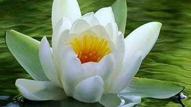 Murfreesboro Meditation and Spirituality Meetup Group
