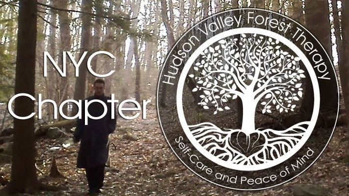 NYC Forest Therapy / Forest Bathing / Hiking
