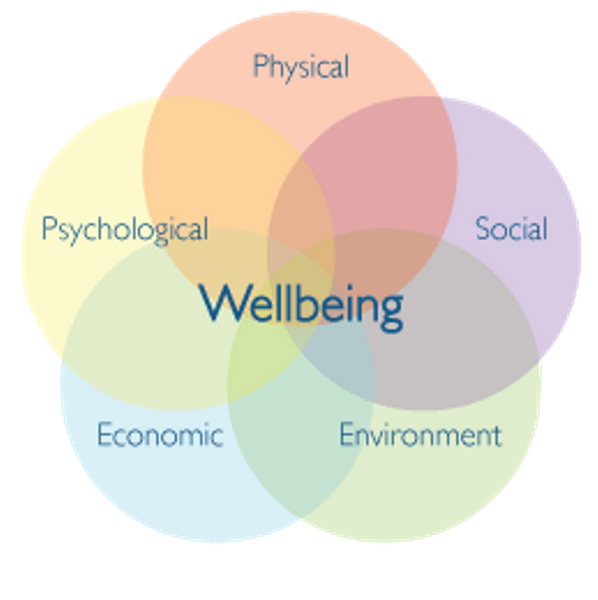 describe the importance for physical and mental well being of balancing periods of physical activity The relationship between physical activity and mental well-being had no connection with socioeconomic standards, age, or gender physical activity is also helpful in lowering blood pressure blood pressure is one of the diseases that has been held responsible for increasing the risk.