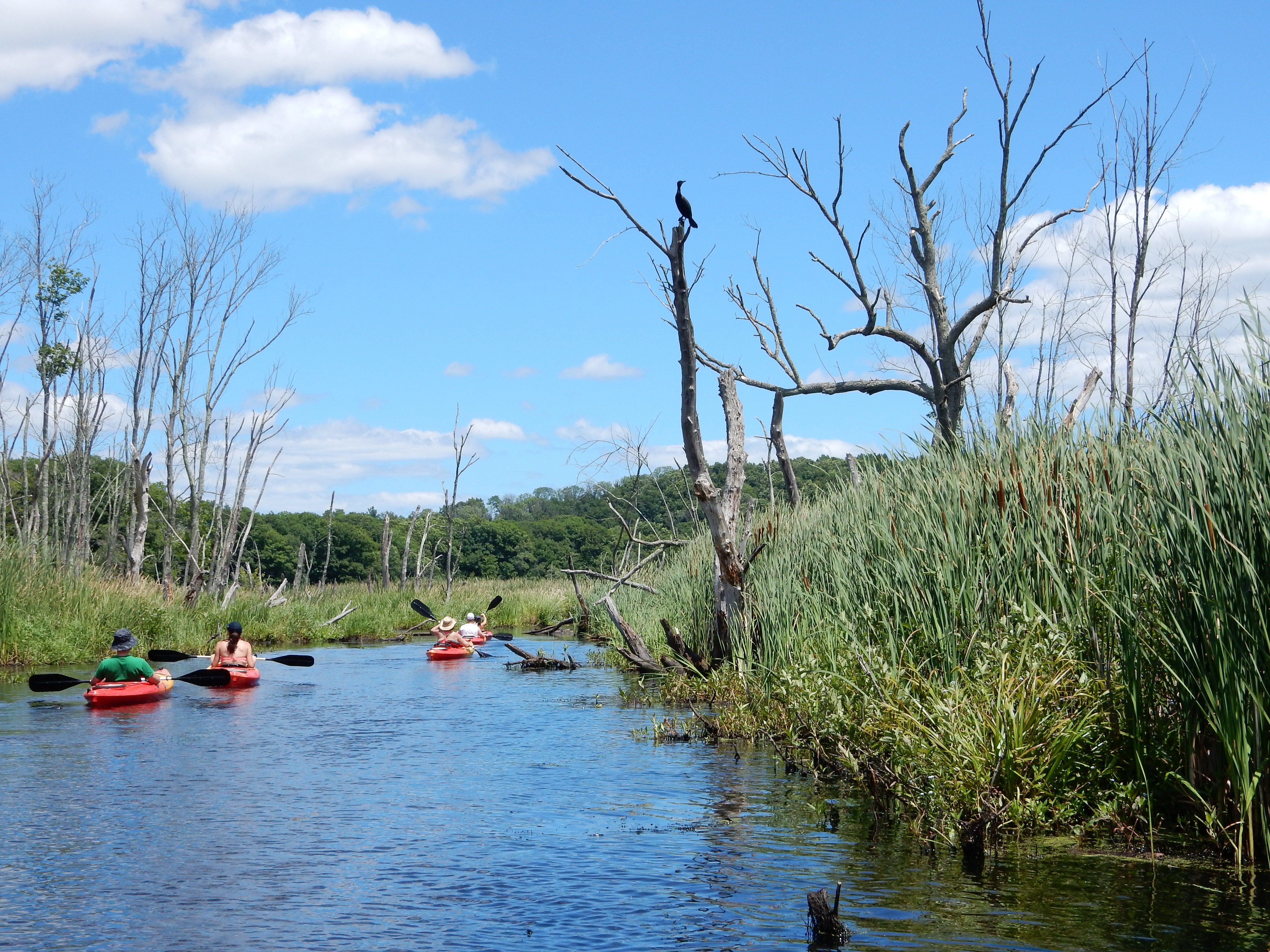 Merrimack Valley Women: Outdoors and About