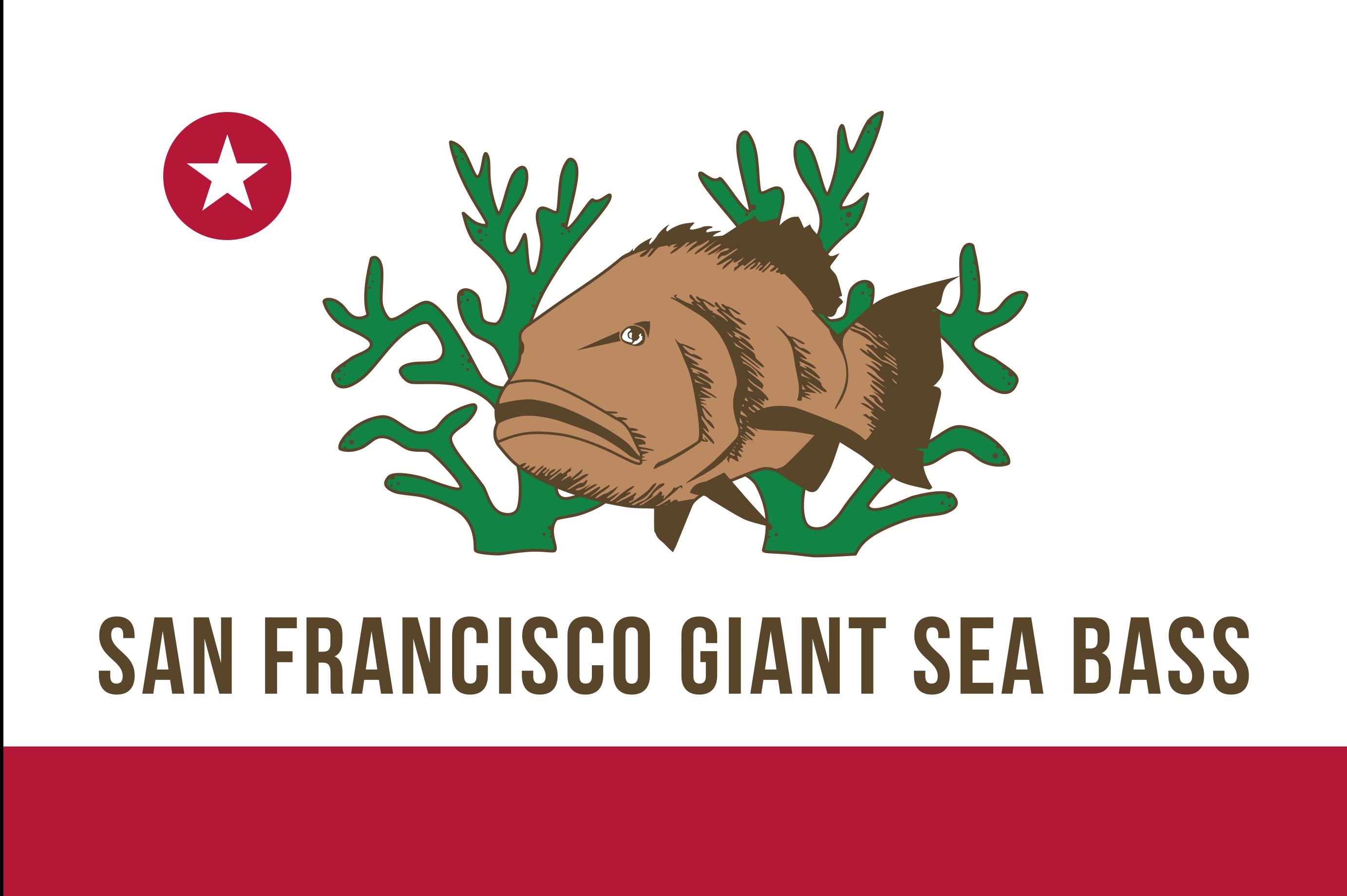 San Francisco Underwater Rugby Meetup