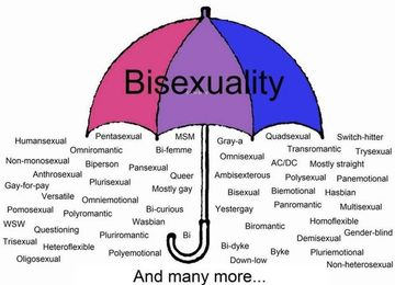 pansexual definition lgbt