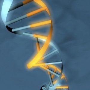 Bay Area Bioinformatics Forum
