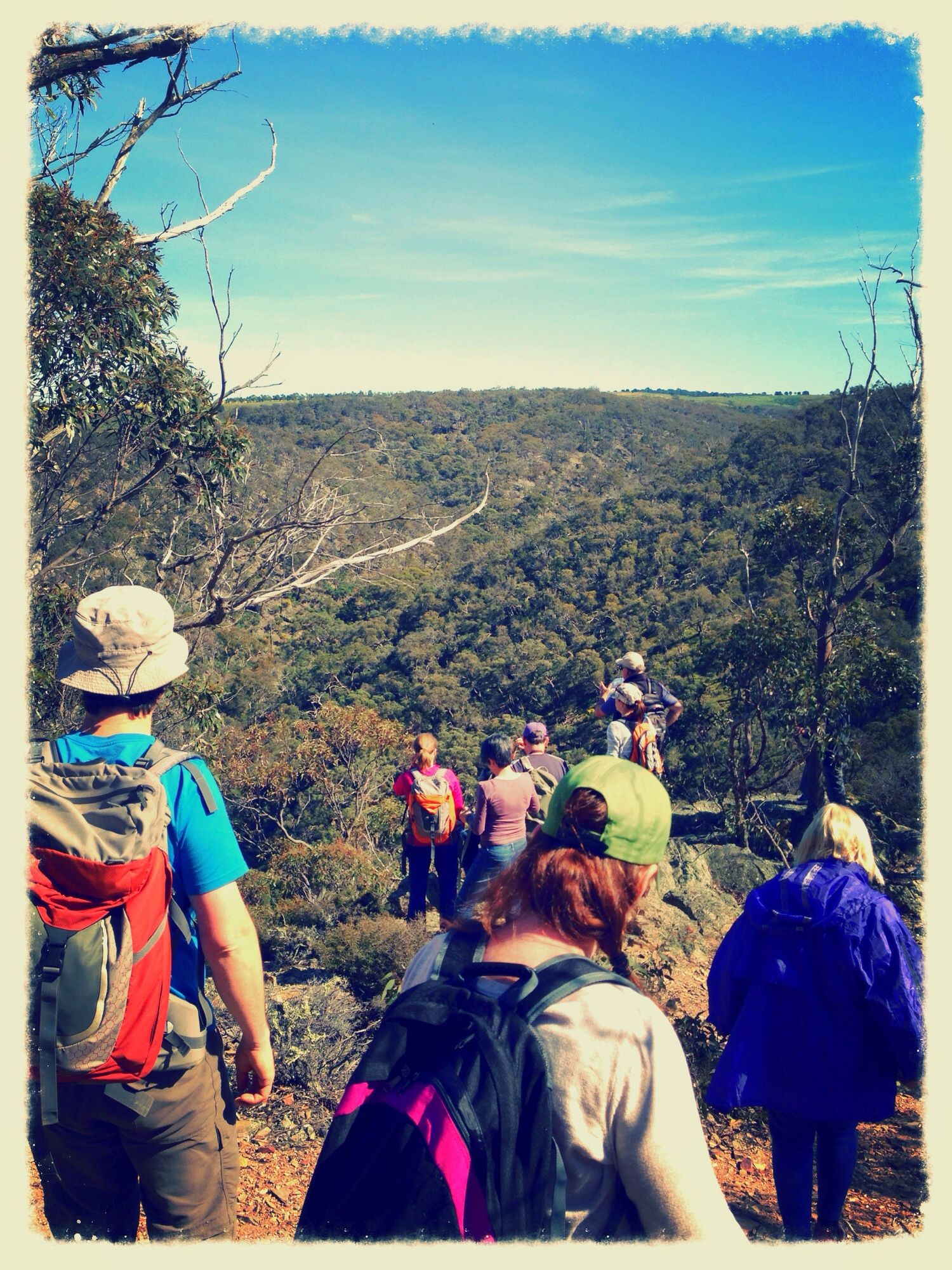 VNPA's Bushwalking & Activities Group (BWAG)