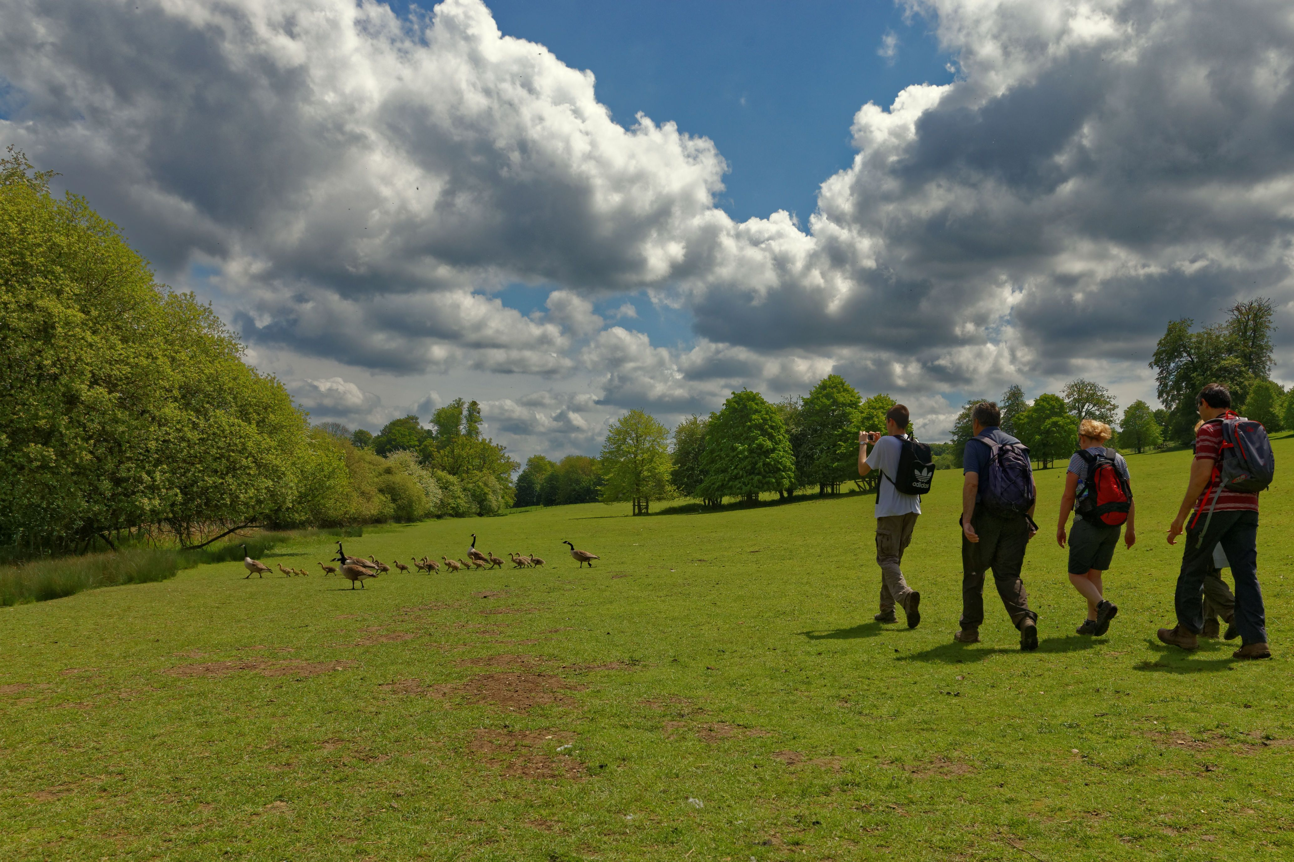 Chiltern Young Walkers