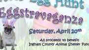 Photo for ICACS Dogs and Kids Easter Egg Hunt April 20 2019