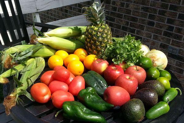 Esselstyn Recipes Plant Based Diet