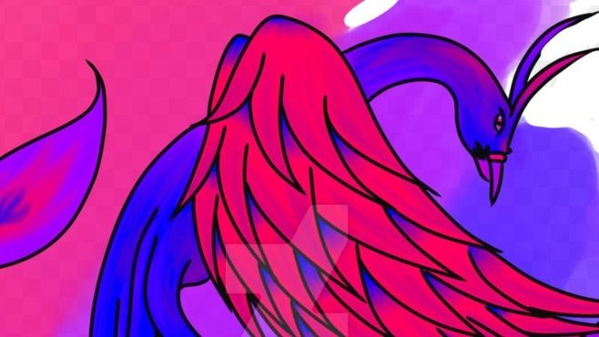 Phoenix BiPandas