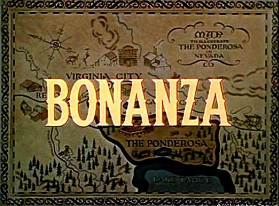Bonanza! Non-Fiction Book Group