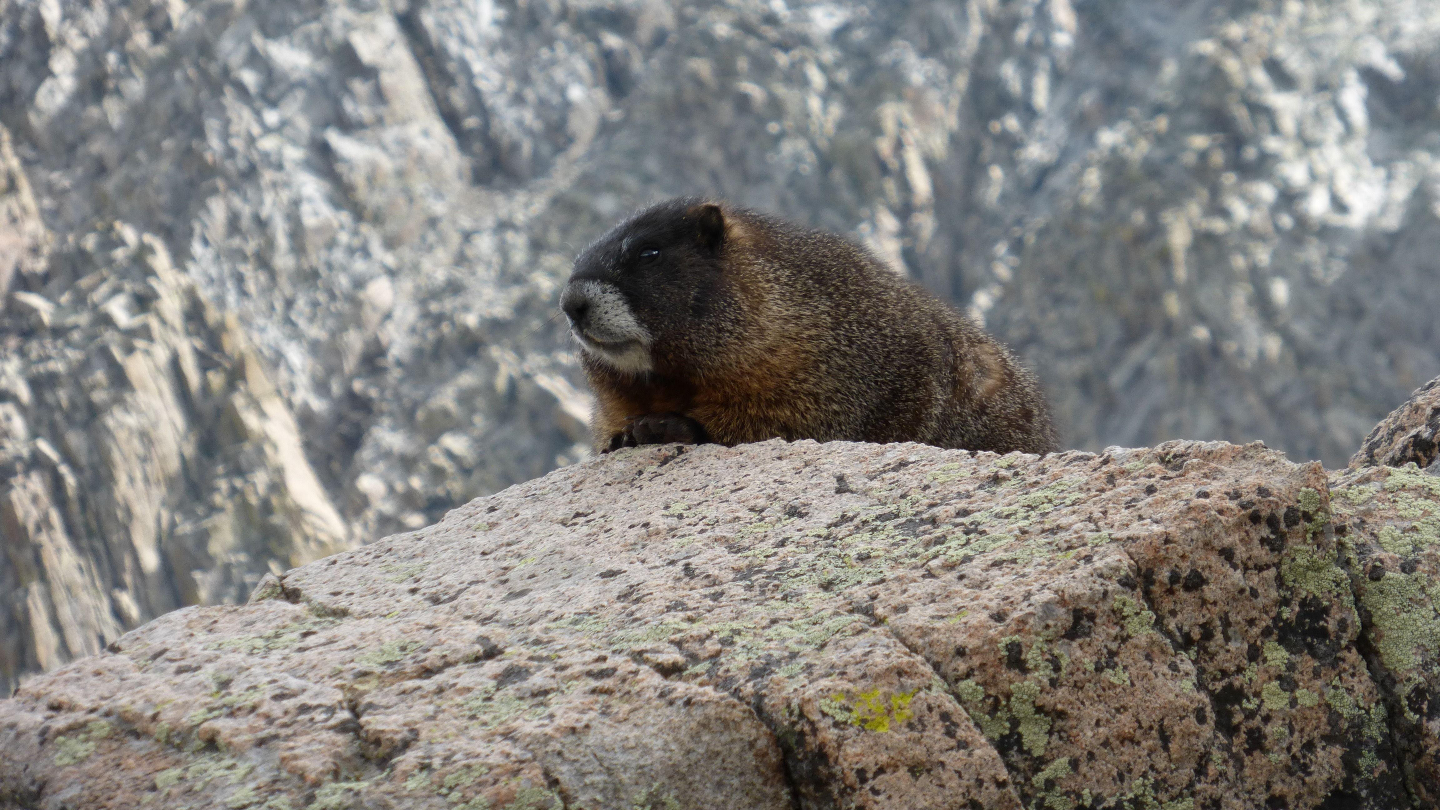 Wilderness Seekers | A Santa Fe Hiking  & Outdoor Group