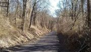 Photo for Walk the north end of the Pennypack trail June 9 2019