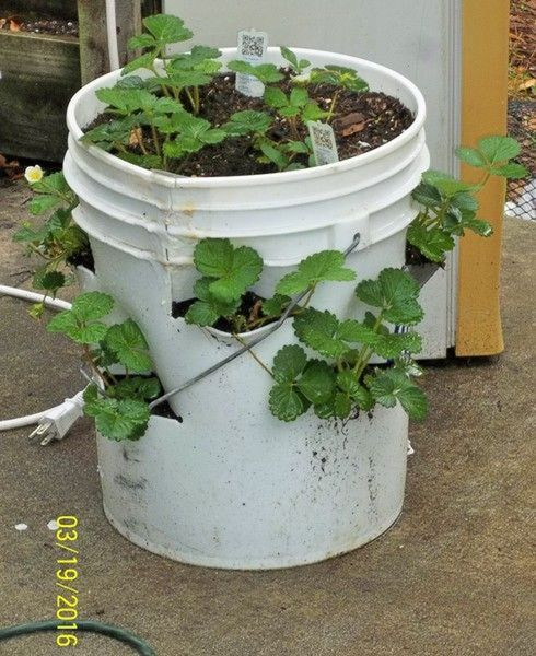 Do It Yourself Home Design: Hands-on Workshop: Make Your Own Garden Towers For