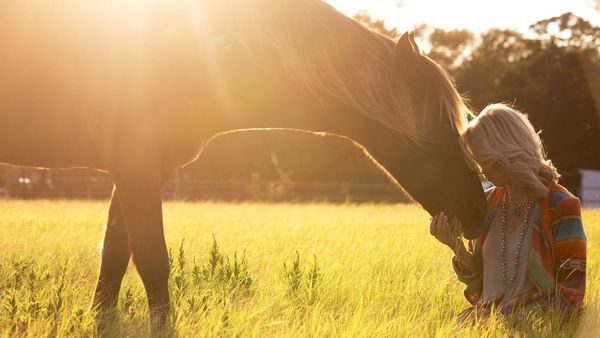 Equine Guided Women's Empowerment Group (Flower Mound, TX ...