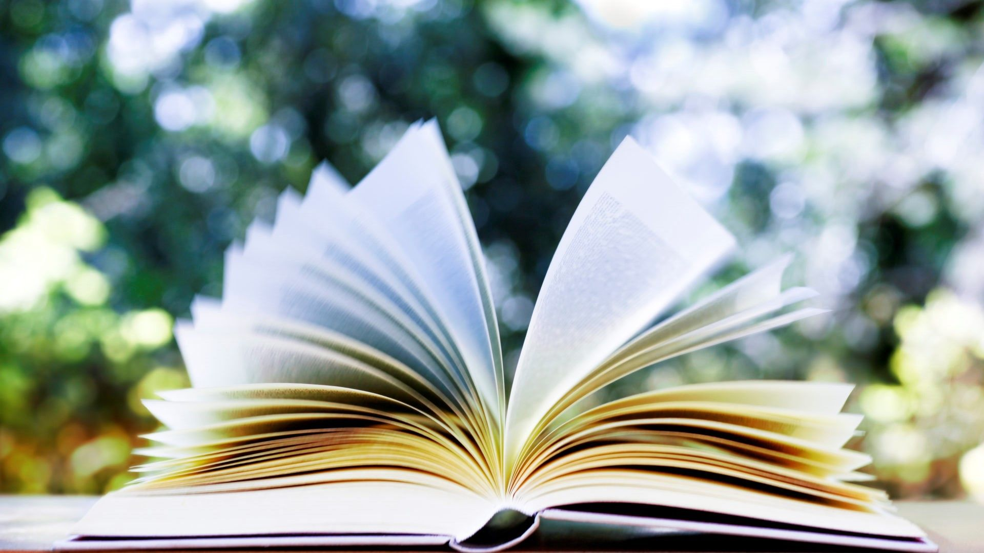 The Leesburg Women's Book Club