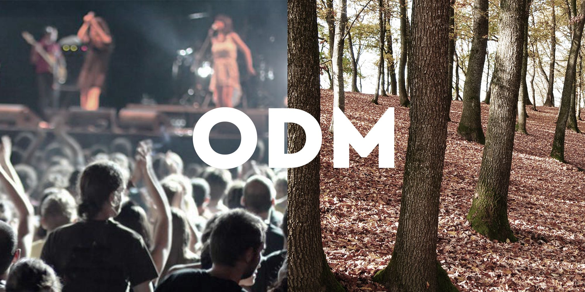 Outdoorsy Musicophiles: Alt/Indie Music & Hiking Fans (NYC)