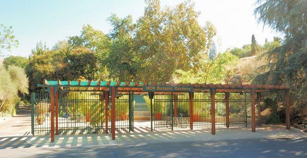 UCR Botanical Gardens | 909 Out Of Shape Beginners Hiking Meetup (San  Bernardino, CA) | Meetup