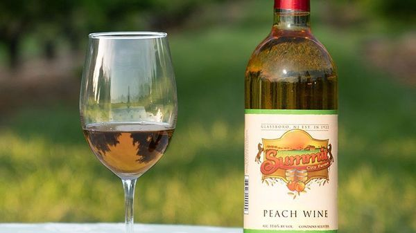 Free Wine Tasting Networking Event At Summit City Winery