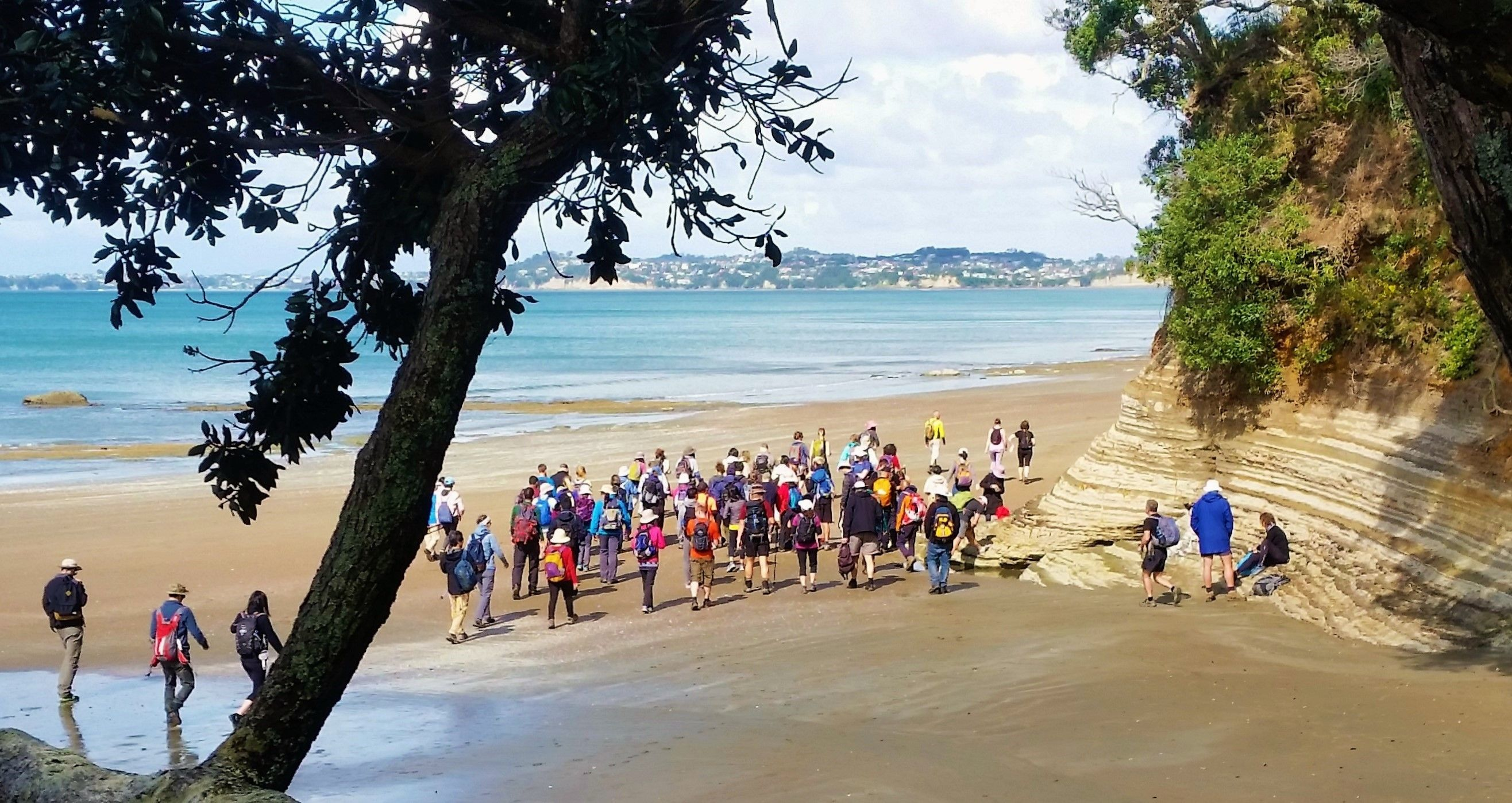 Auckland Hiking Group