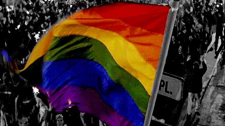 "Elmira's ""gay, lesbian, bisexual, trans, str8, social group"""