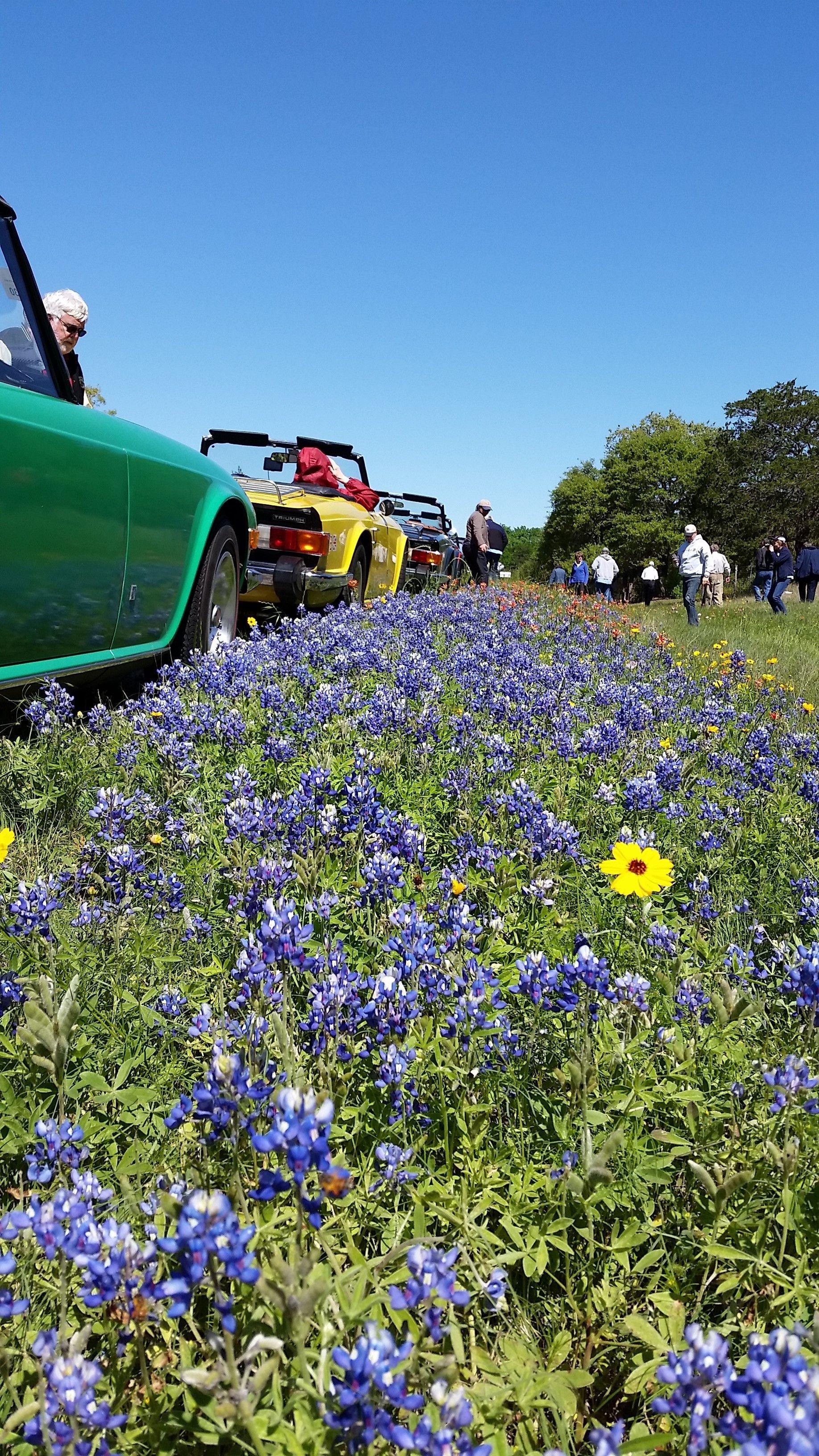Texas Triumph Register Meetup Group