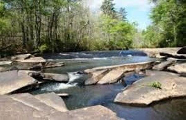 Line Creek Nature Center Peachtree City