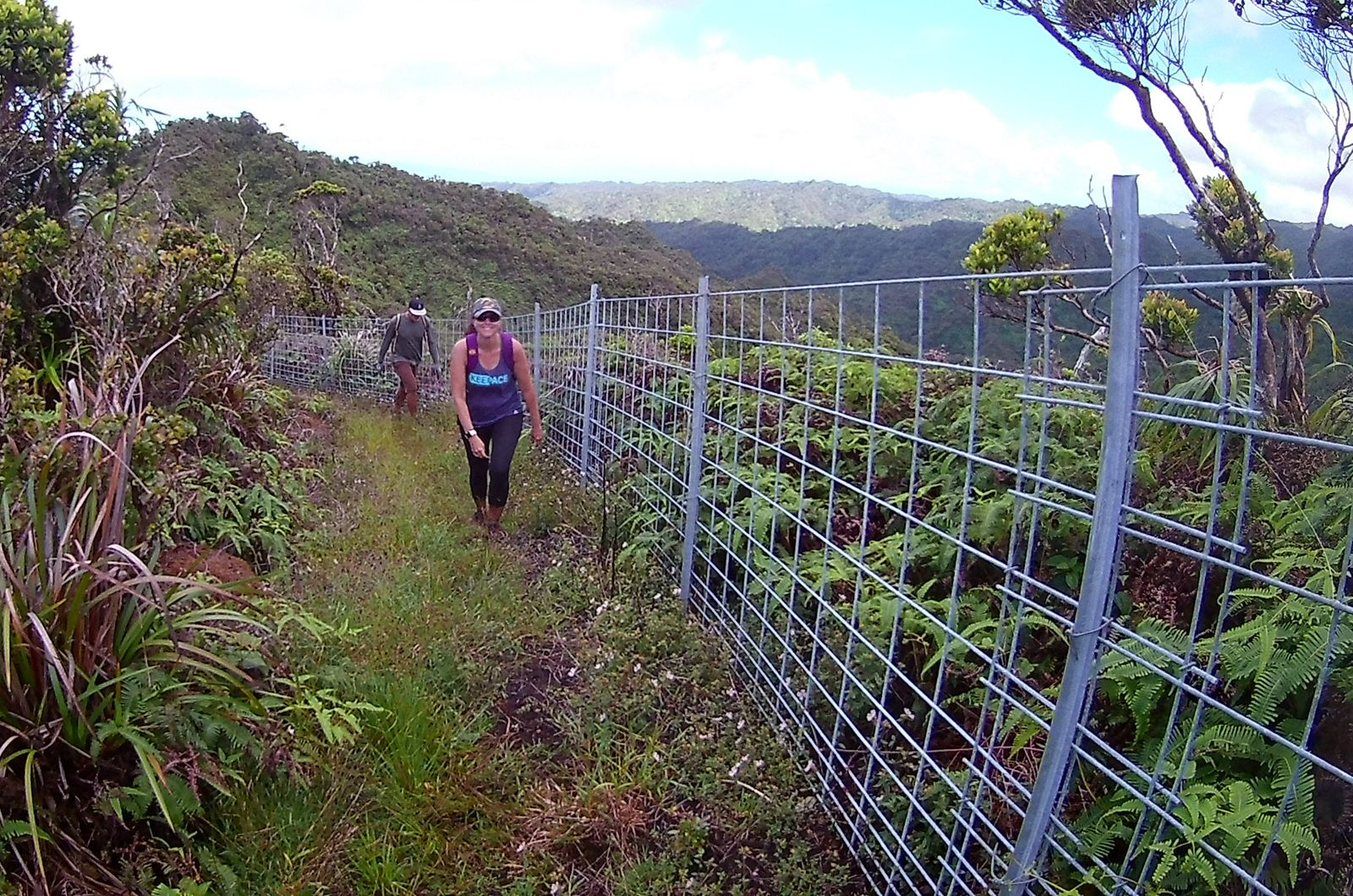 The Hawai'i Hiking Group
