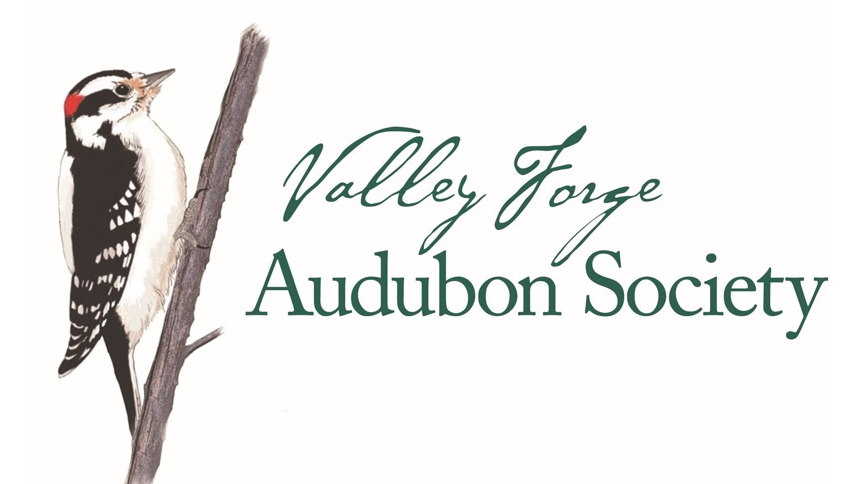 Valley Forge Audubon Society         Calendar of Events