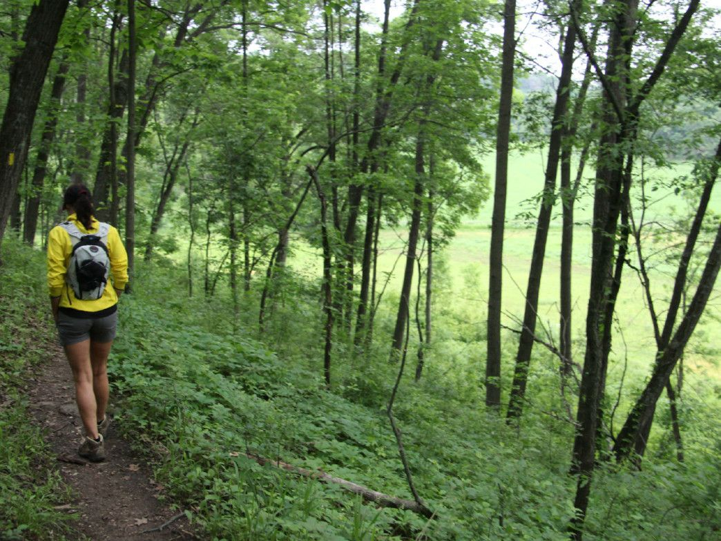 CNY Chapter of the North Country Trail Association