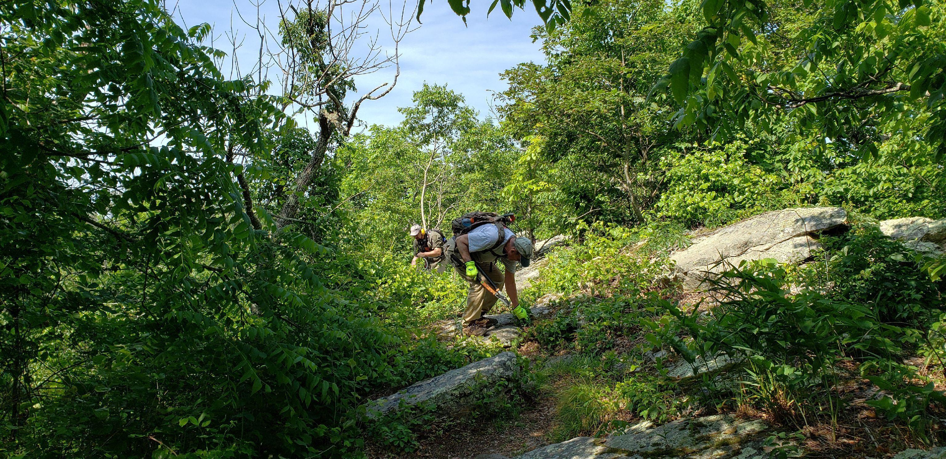 Roanoke Appalachian Trail Club Meetup Group