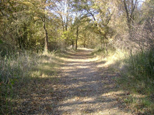 Shell Gas Station Near My Location >> Bobelaine Sanctuary Trails Loop 4 miles | Trail Mix Hikes