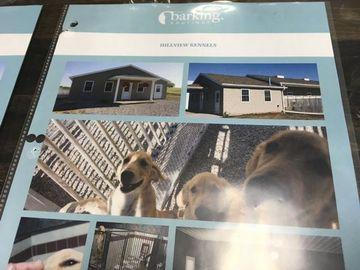 Grandville, MI) The Barking Boutique - Sharing Petland's