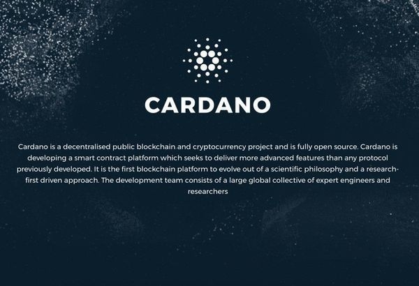 Cardano Blockchain Netherlands