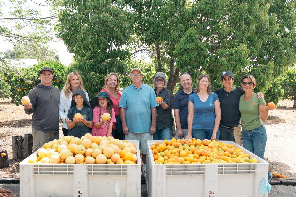 Market Share Farmer's Market Food Recovery -