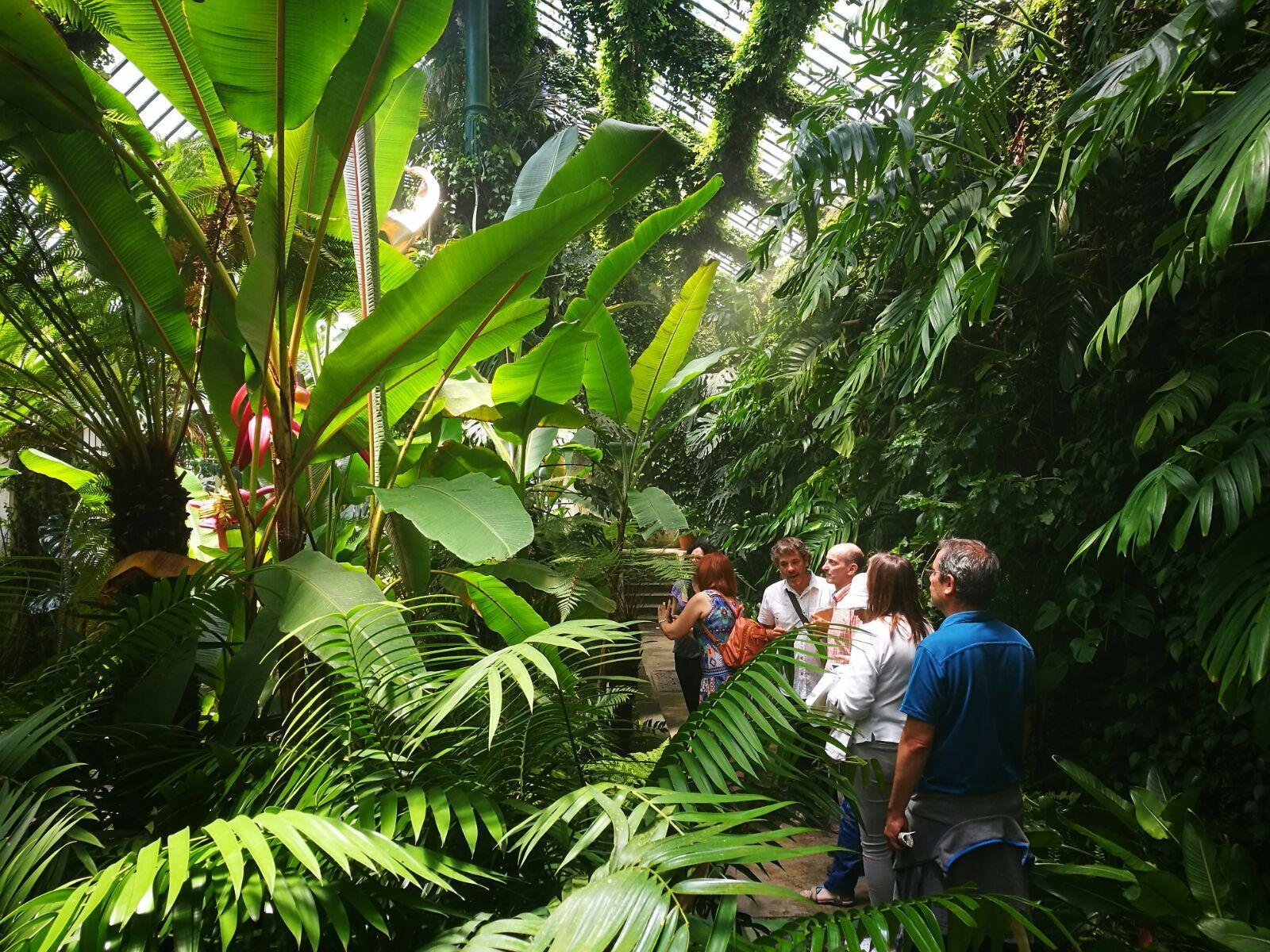 Visitas botánicas en Madrid