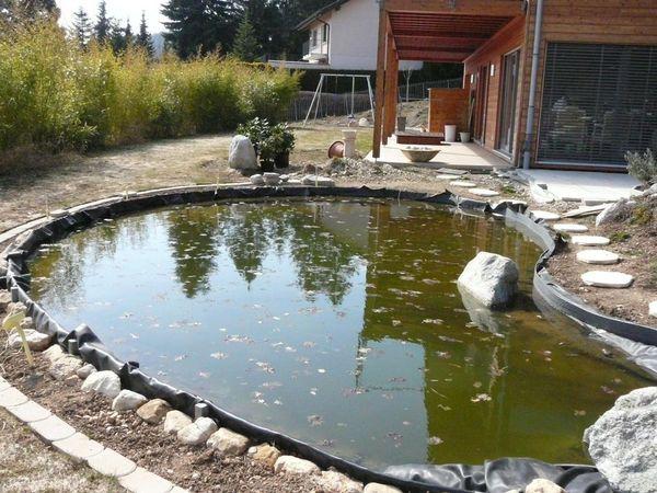 Fotos geneva area pond club gen ve meetup for Garden pool meetup
